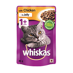 85g Whiskas 1 year plus chicken in jelly cat food