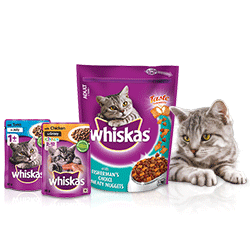Whiskas® Cat with Adult and Kitten Product range Layout