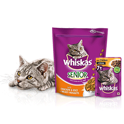 1KG Whiskas® with Chicken and Rice and Meaty Nuggets 8 Year + and 85g Whiskas® with Chicken in Gravy 7 Year +