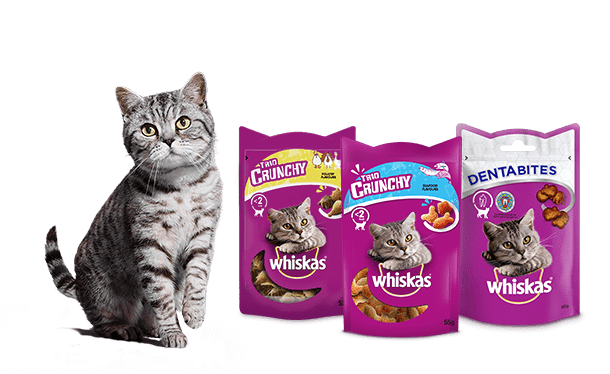Whiskas® Cat and Product Treat Layout